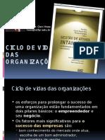 Cap 03 - Ciclo de Vida Das Organizacoes
