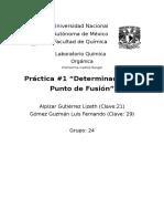 Practica 1 Organica
