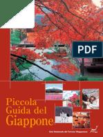 113336007 Giappone Italiano