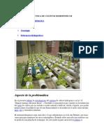 Tecnica de Cultivos Hidroponicos