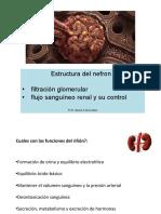 CLASE 18 Estructura del nefron y formación orina I.pdf