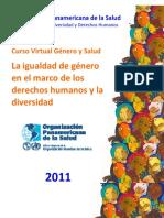 01 2010 Gomez E La Igualdad de Genero en El Marco de DH y D