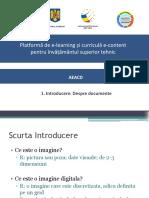 1 Introducere Despre Documente