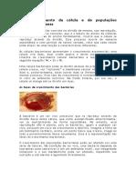 Crescimento Da Célula e de Populações Bacterianas
