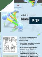 6_BIORREACTORES.pdf