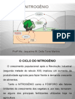 Ciclo Do Nitrogênio.pptx