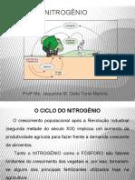 Ciclo Do Nitrogênio.pptx