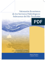 Valoracion Economica Rio Teculutan (1)
