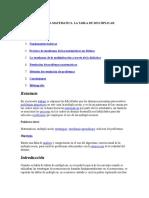 Didactica Matematica La Tabla de Multiplicar