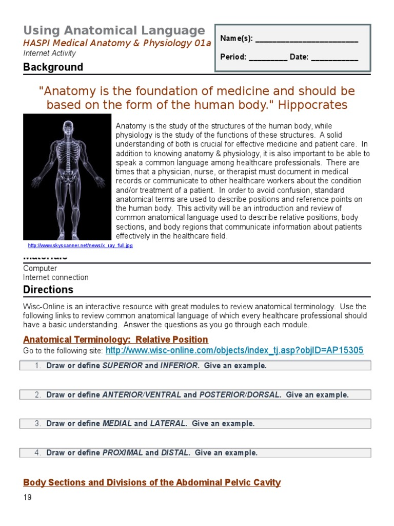 Fantástico Wisc Online Anatomy And Physiology Regalo - Anatomía de ...