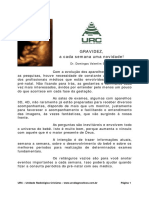 calendario da Gravidez.pdf