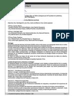 SRG-Pautas de entrega 1C.pdf