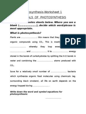 Photosynthesis Worksheet Photosynthesis Adenosine Triphosphate