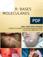 Cancer Bases Moleculares