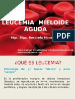 LMA Trujillo