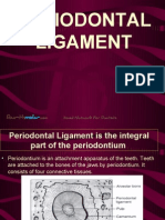 Periodantal Ligament Perio
