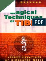 Magical Techniques of Tibet (9788178221045)