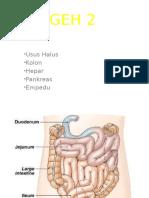 GastroEnteroHepatica 2