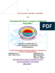 "Marketing Mix Plan & Consumer Feedback For Bajaj Bikes"".doc"
