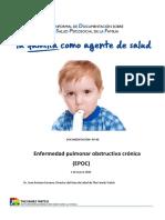RIDSPF60.pdf