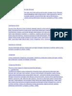 Definisi Fibroma Traumatik Dan Etiologi