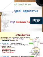 Development of Pharyngeal Apparatus