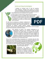La Huella Ecológica- ARTICULO