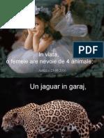 ANIMALELE FEMEILOR