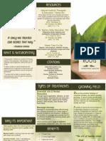319 brochure word doc