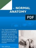 Tmj Normal Anatomy Oral Surgery