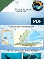 Centro Ecologico Akumal
