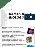 3. Ramas de la Biología.pptx