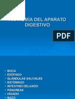 6ANATOMÍA DEL APARATO DIGESTIVO.ppt