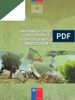prog 4to Mapuzugun.pdf