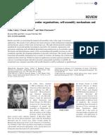 49_valery_SM.pdf