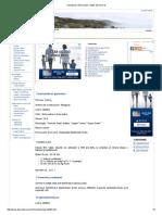 Calcopirita.pdf