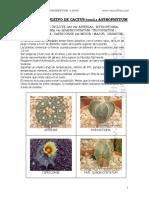 Manual Cultivo Cactus Astrophytum Neocultivos