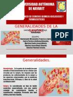 Generalidades de La Sangre Expo Final