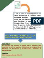 EvaluacionAmbiental4