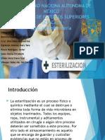 Proceso Esterilización