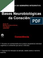 Bases Neurológicas Da Consciência