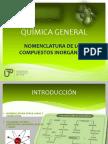 T1-Nomenclatura_de_los_compuestos_organicos-1.pdf