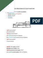 Exempla usus pronominum atque participii