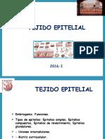 02 Tejido Epitelio 2016-I