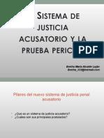 1. Sistema acusatorio y la prueba pericial.ppt