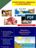 3 Nutrición Clínica - Micronutrientes I