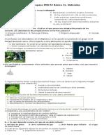 guia de ciencias PDN primer semestre.docx