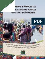 Demandas y propuestas Políticas Pueblos Indígenas