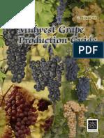 Grape Production Guide