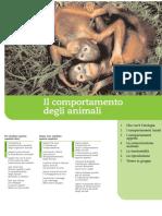 b09_129-148-2008.pdf